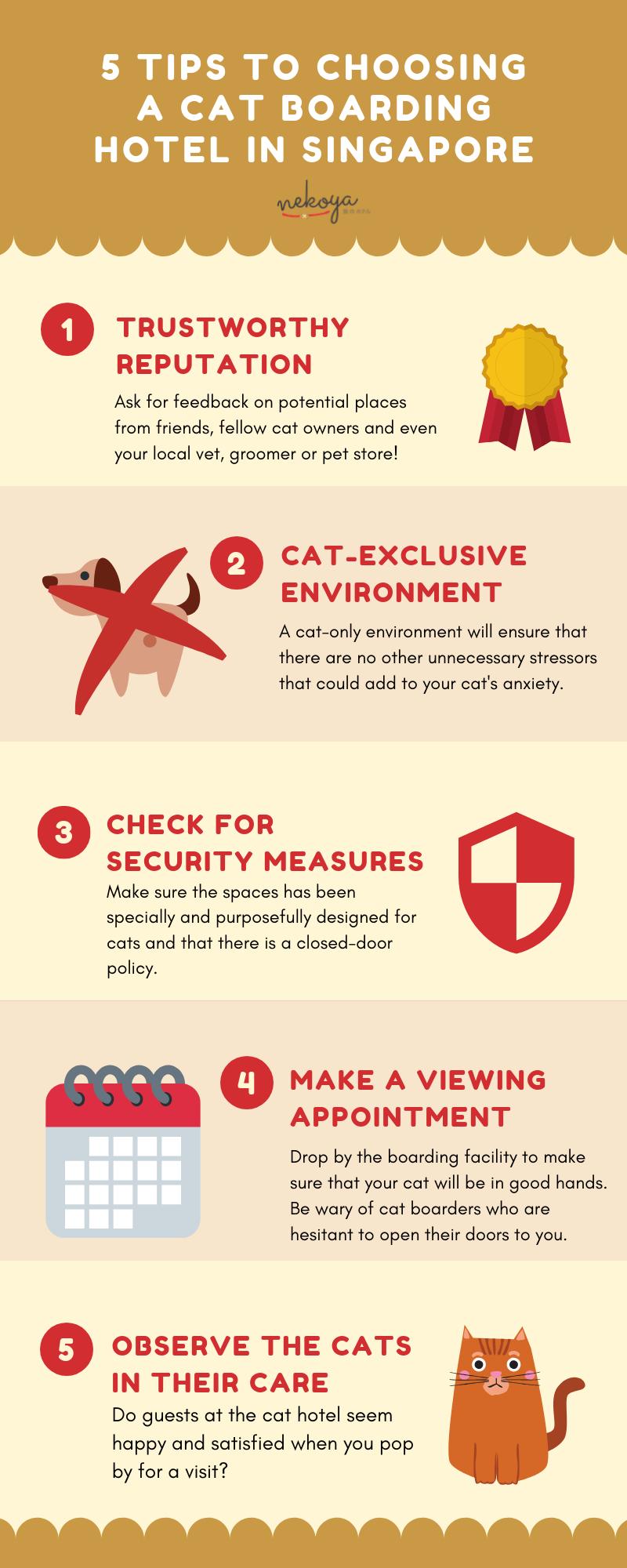 nekoya choosing a cat boarding hotel in singapore infographic